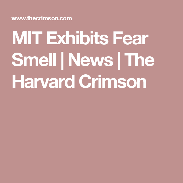 MIT Exhibits Fear Smell | News | The Harvard Crimson