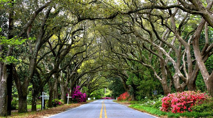 Visit The Prettiest Town In Alabama For An