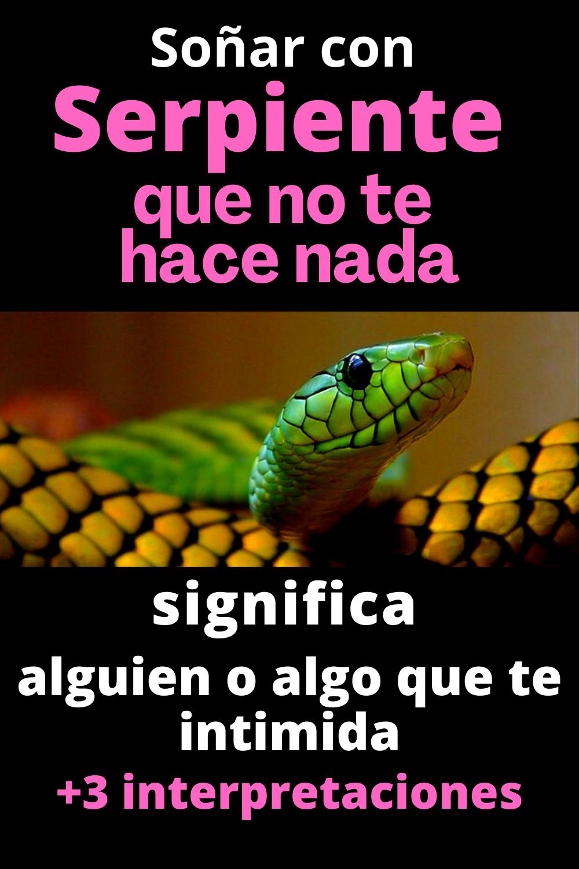Que Significa Sonar Serpiente Que No Te Hace Nada En 2021 Serpientes Sueños Hice