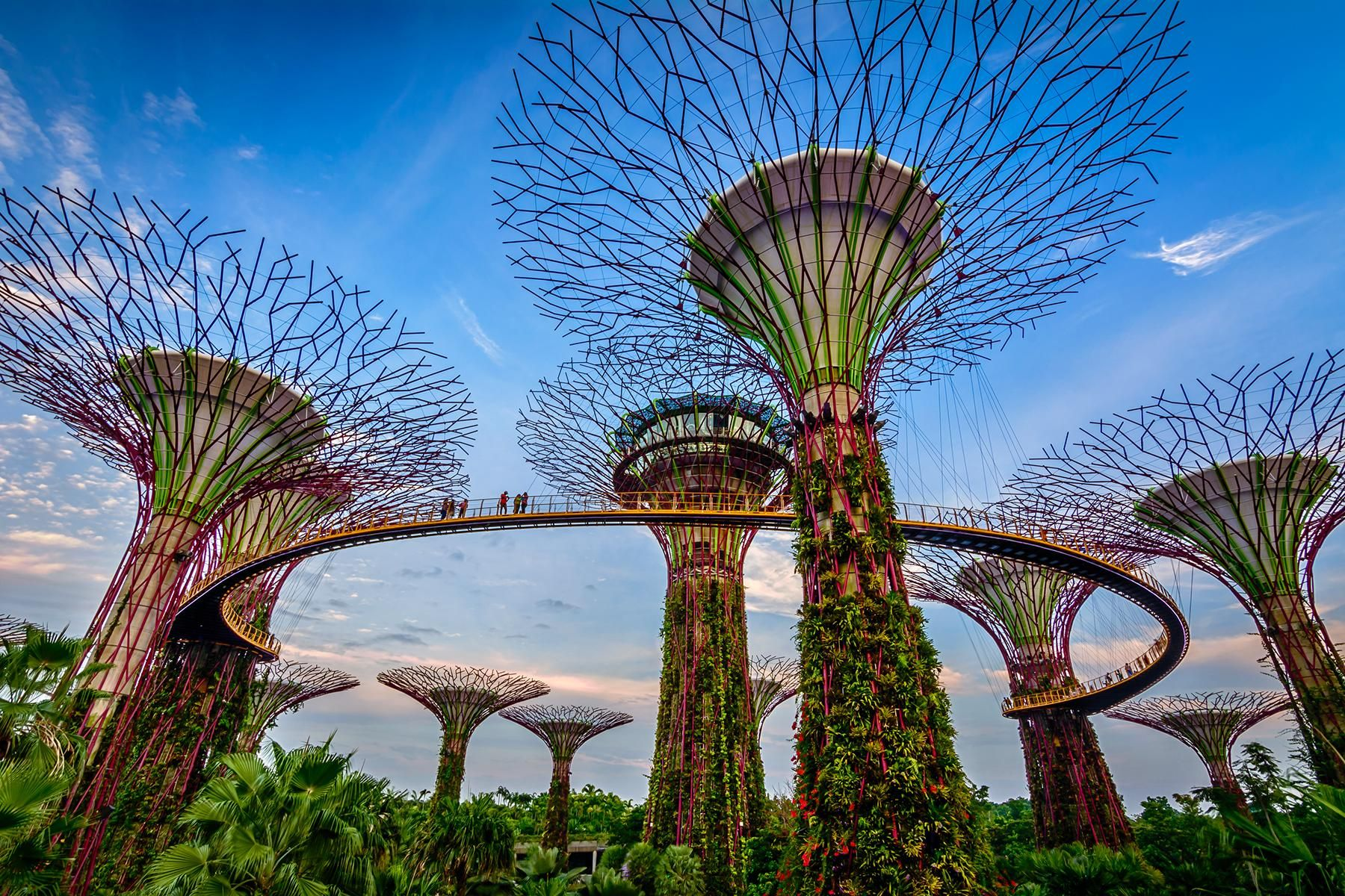 A Crazy Rich Asians Guide To Singapore Gardens By The Bay Singapore Garden The Parking Spot Hobby