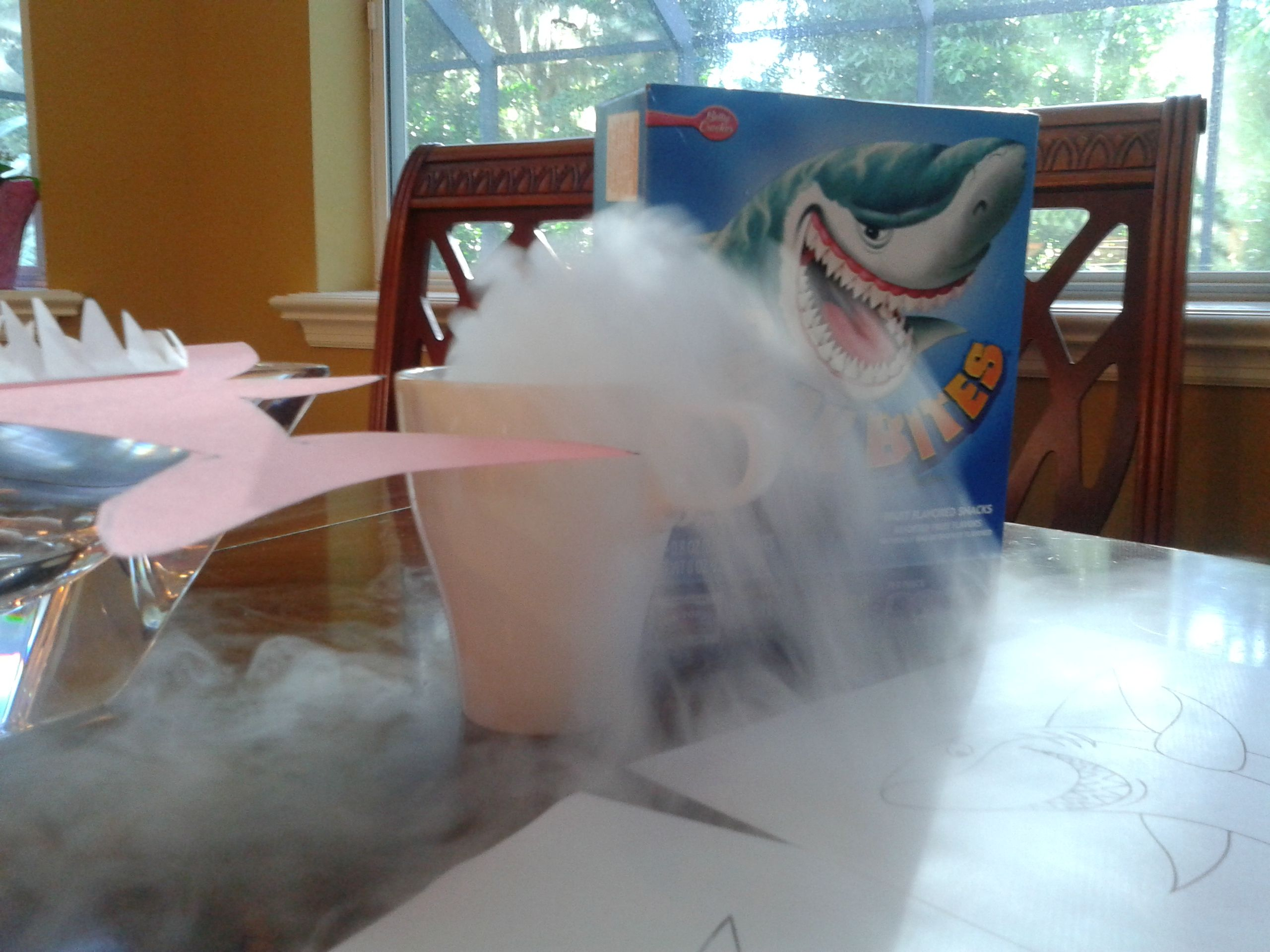 Dry ice activities you can buy it at publix handle it carefully dry ice activities you can buy it at publix handle it carefully i robcynllc Gallery