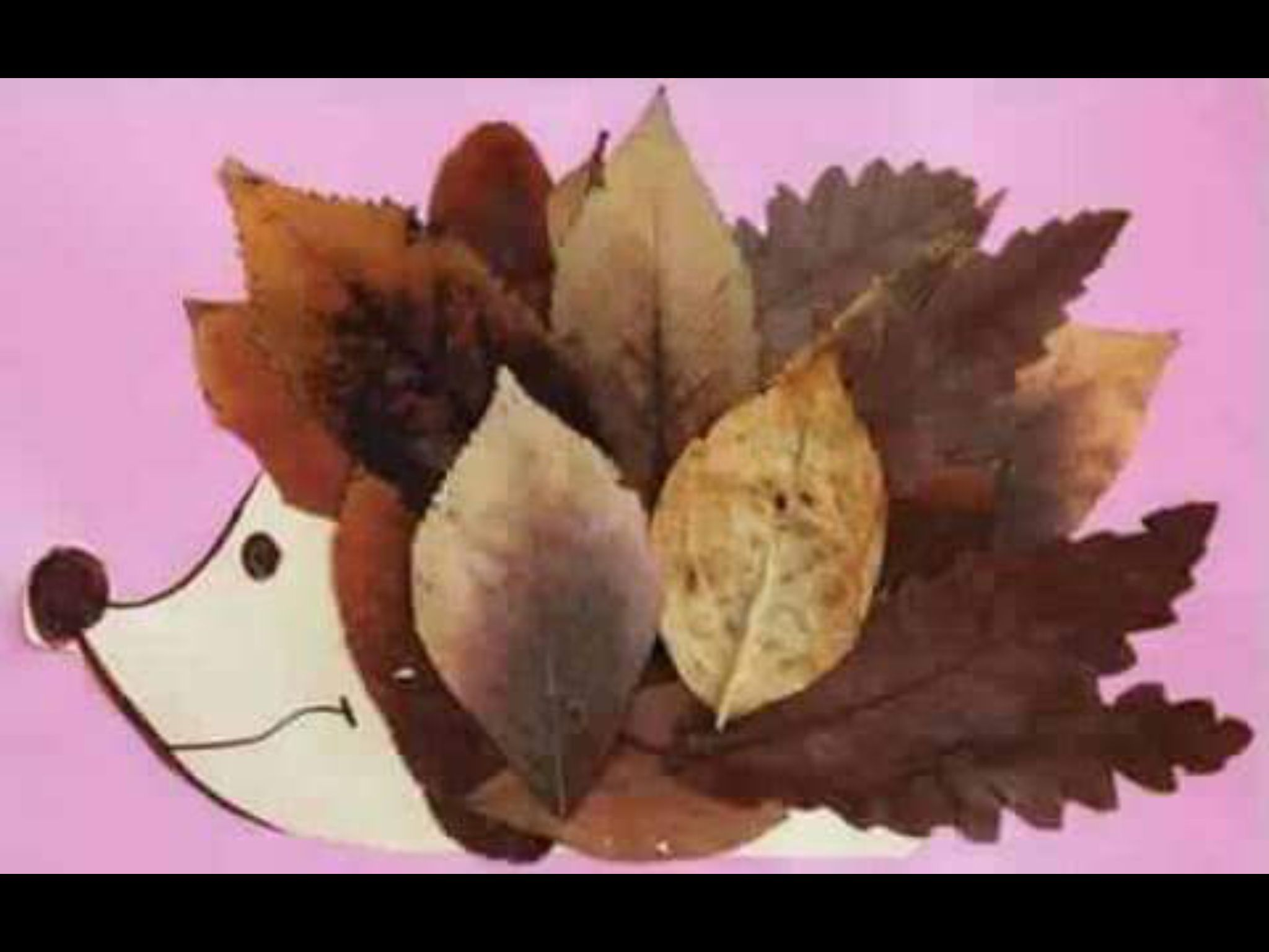 Leaves on pinterest autumn leaves fall leaves crafts and fall - Explore Fall Leaves Crafts Autumn Leaves And More