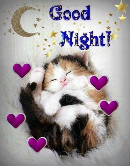 Goodnight sister and all have a restful sleep to - Good night nature pic ...