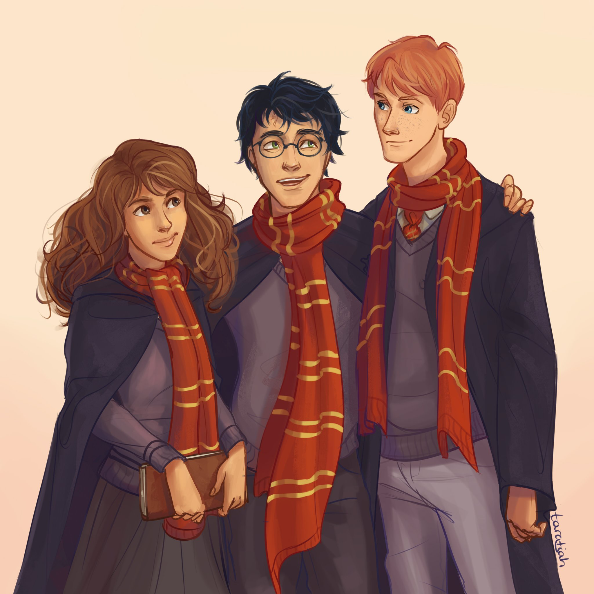 The golden trio harry ron and hermione harry potter - Rone harry potter ...