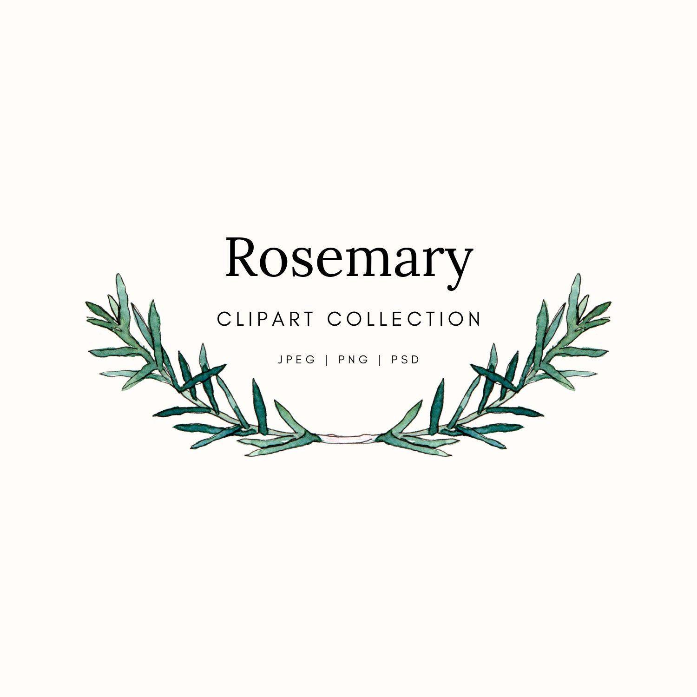 Rosemary Herb Clipart Illustration Wreath Frame Logo Etsy Clip Art Herbs Illustration Frame Logo
