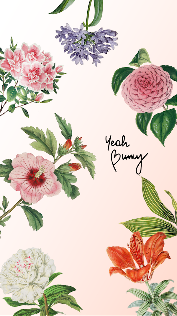 Zgarnij Darmowe Swiateczne Tapety Wallpaper Iphone Cute Bunny Wallpaper Iphone Background