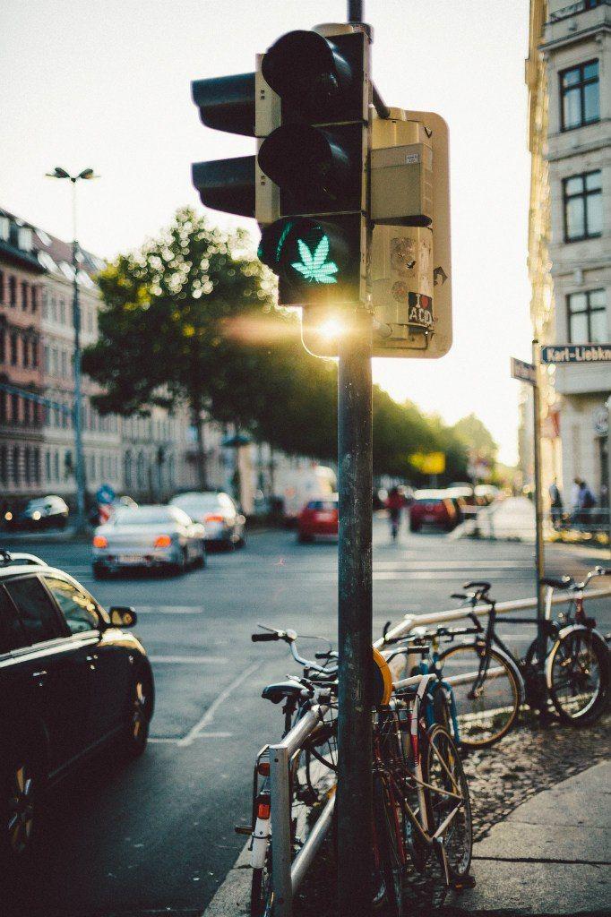 Светофоры и конопля марихуана при грудным вскармливании