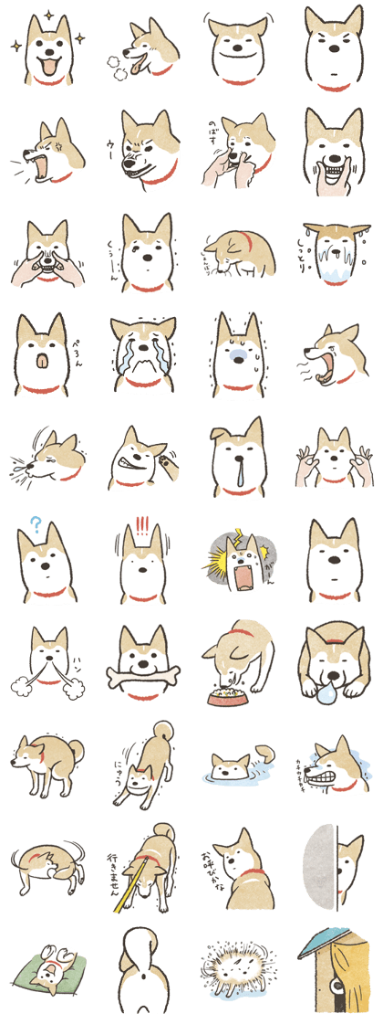 Shiba Inu (Shiba-Dog) stamps Line Sticker - Rumors City