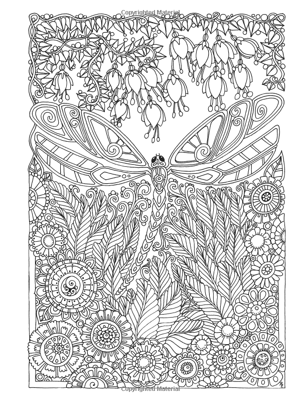 Creative Haven Entangled Dragonflies Coloring Book (Adult Coloring ...