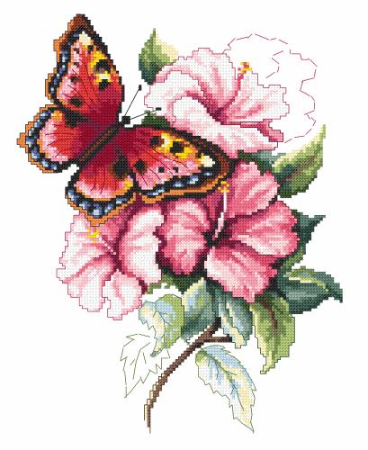 Corciamo - Kolorowy motyl - 27 kolorów