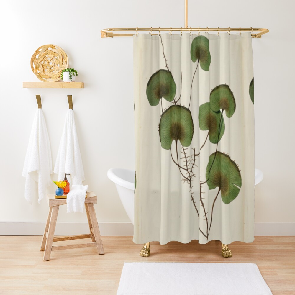 Kidney Fern Shower Curtain Shower Curtain Curtains Personalized Shower Curtain