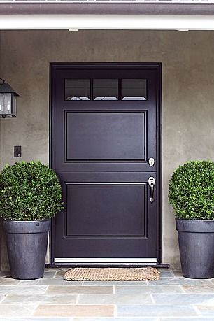 A Unique Door Plum Colored Solid Panels With Upper