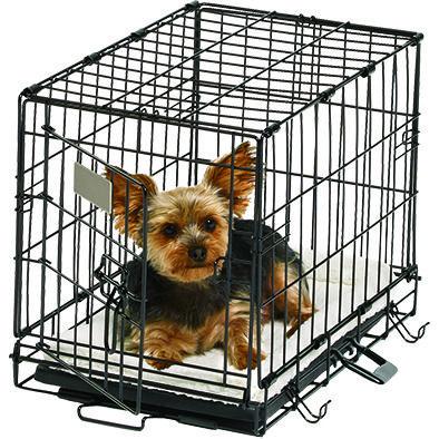 19 Single Door Dog Crate Sale 34 98 Pet Supplies Plus Pet
