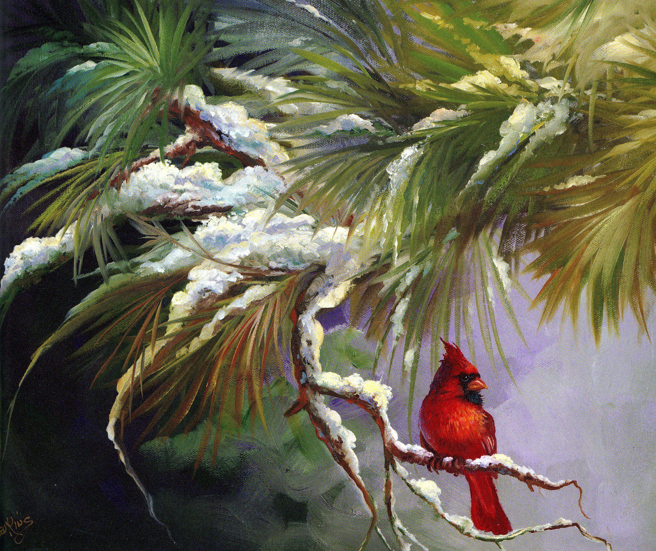 Winter Cardinal.. Gary Jenkins oil painter - painting style. Fairy and peaceful.picturi iarna