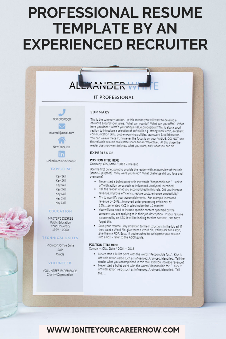 Resume Template IT Professional, CV Template Word