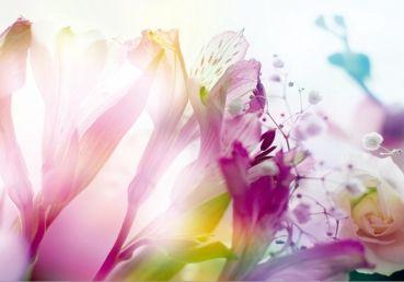 Fototapete - Light Flowers