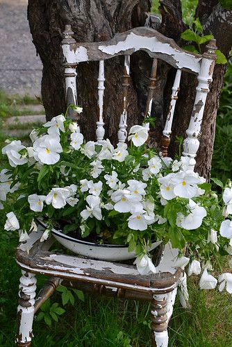 White Rustic Garden Chair.... blakeliegh this is good to do with really nasty beat up chairs you might find, I have some and I am going to try this.