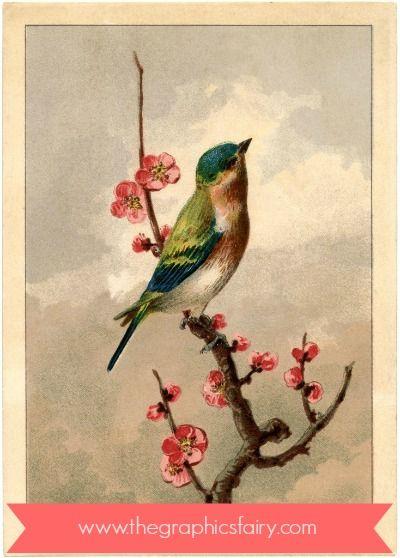 Spring Bird Art Diy Custom Home Decor