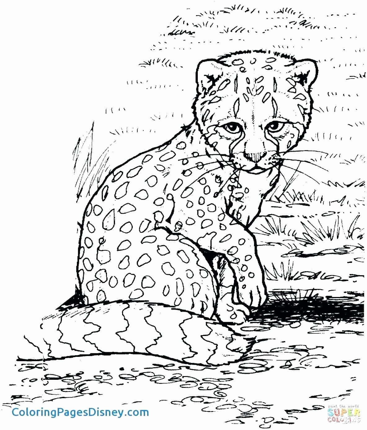 Animal Jam Coloring Page Snow Leopard And Her Cub by ... | 1387x1184