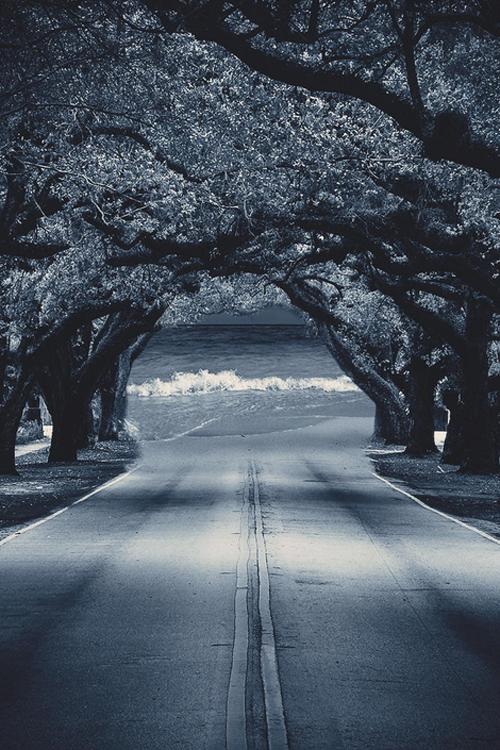 My Dreamstreet | …. by Julian Sänger