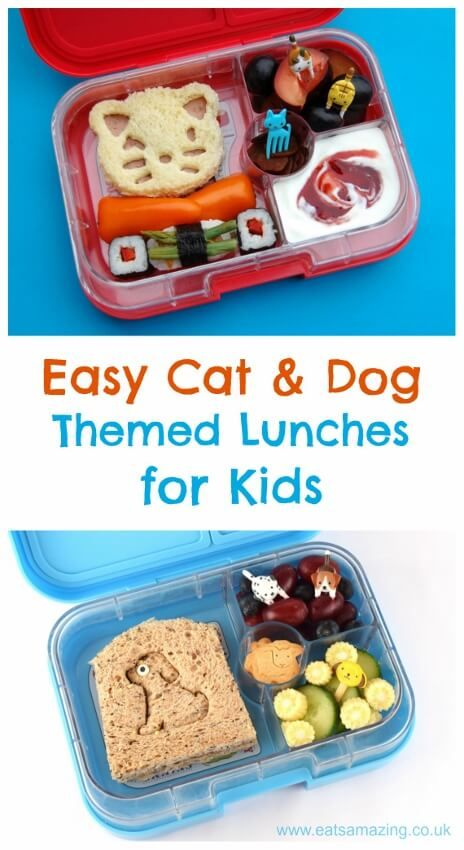 3 easy ideas for cute lunches for kids with a fun cat or dog theme