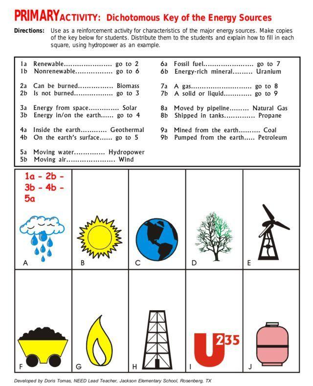 Primary Activity Dichotomous Key Of Energy Sources Worksheet Jpg