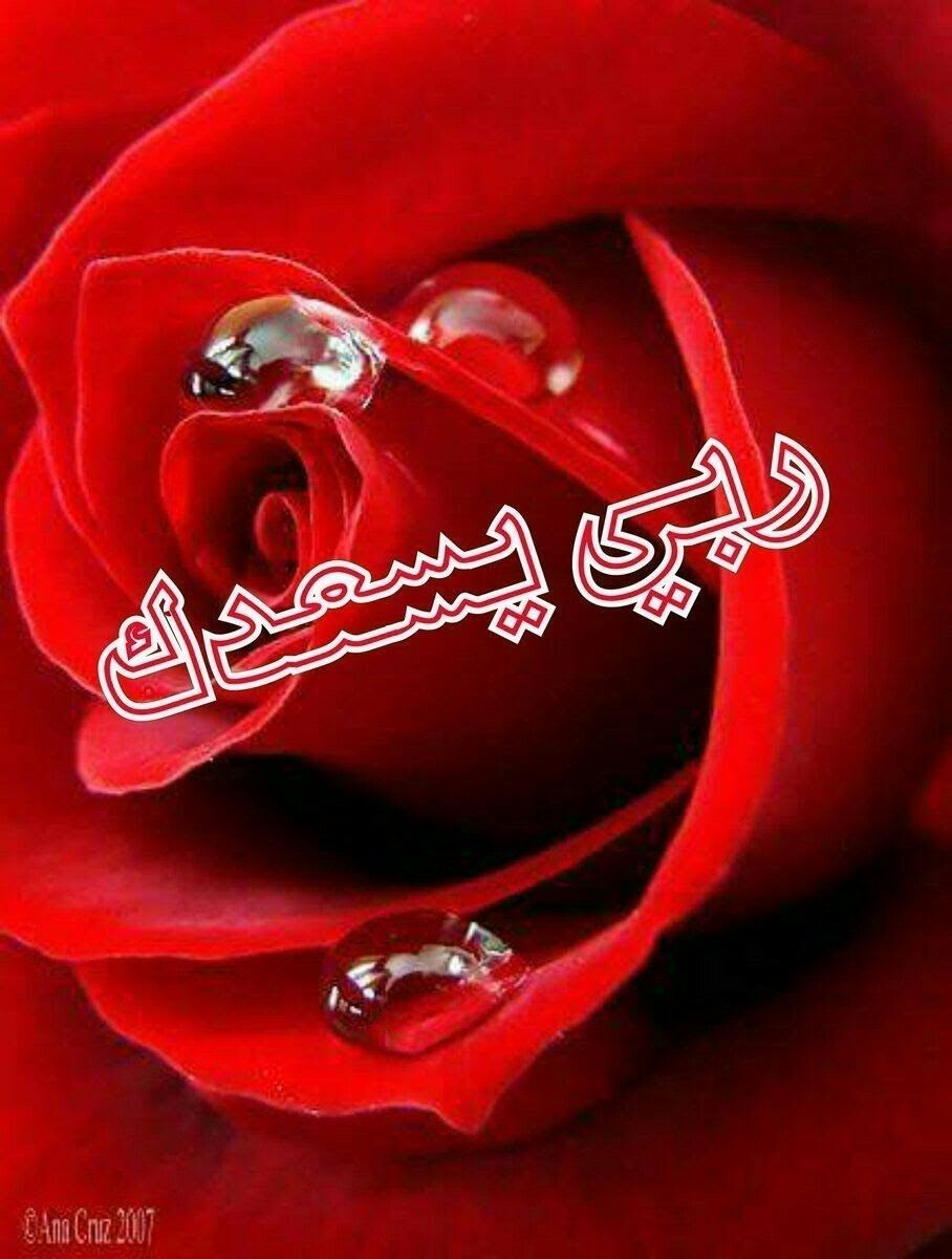 Pin By Hamo Beyrouty On ربي يسعد قلبك Islamic Love Quotes Romantic Anime Islamic Pictures