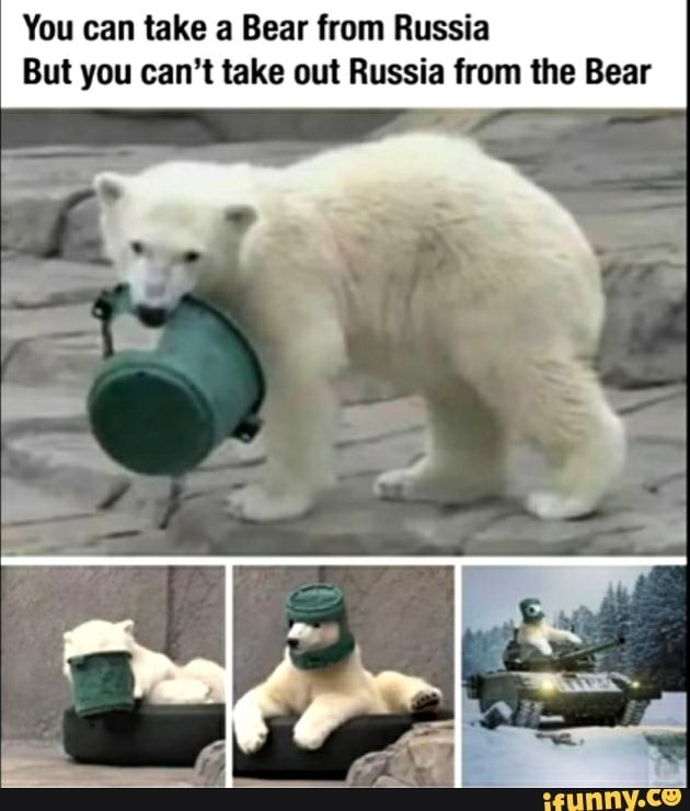 You Can Take A Bear From Russia But You Can T Take Out Russia From The Bear Ifunny In 2020 Really Funny Memes Stupid Memes Funny Memes
