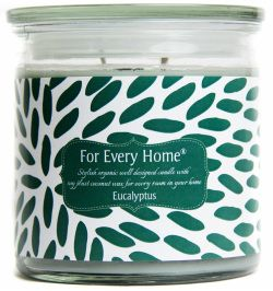 Eucalyptus Soy Plus Coconut Candle by For Every Home. #foreveryhome