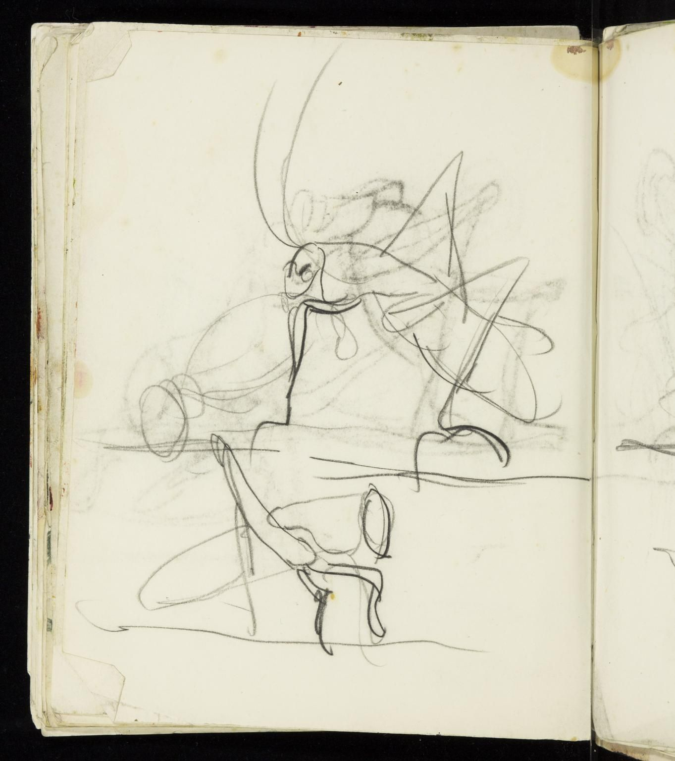 Graham Sutherland OM 'Studies of three grasshopper-type insects ', 1947–57 © The estate of Graham Sutherland