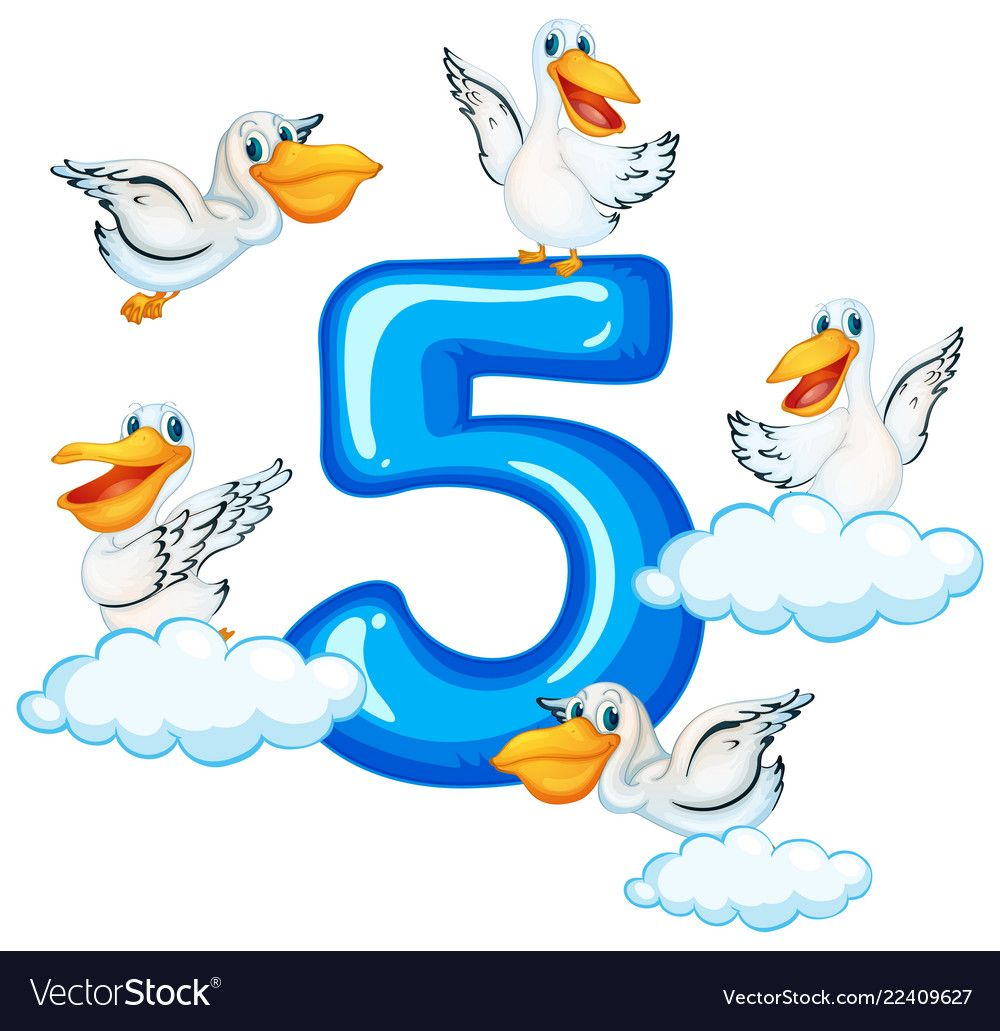 Five Pelican And Number Five Illustration Download A Free Preview Or High Quality Adobe Illust Kids Worksheets Preschool Numbers Preschool Flashcards For Kids