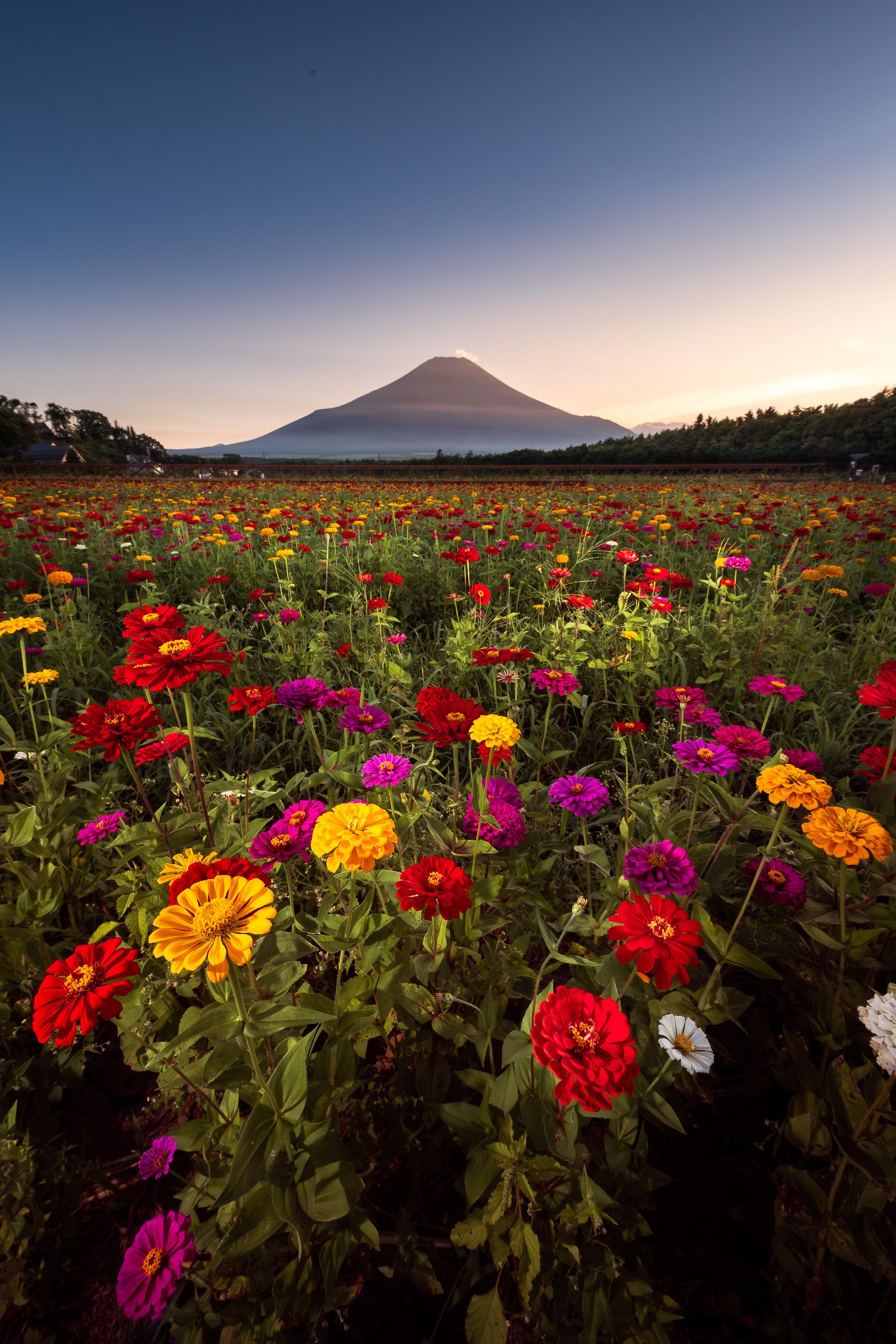 Mount Fuji おしゃれまとめの人気アイデア Pinterest Jana Haasova 2020 風景 山 写真 美しい景色