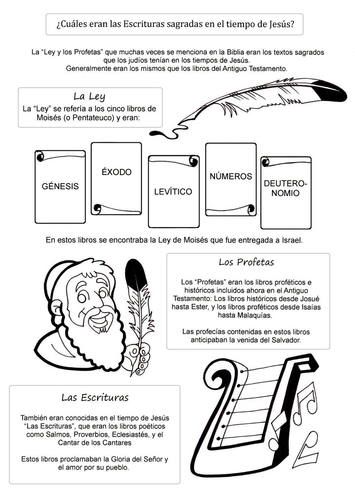 Fichas para conocer los Evangelios jugando: Colorea y aprende los ...