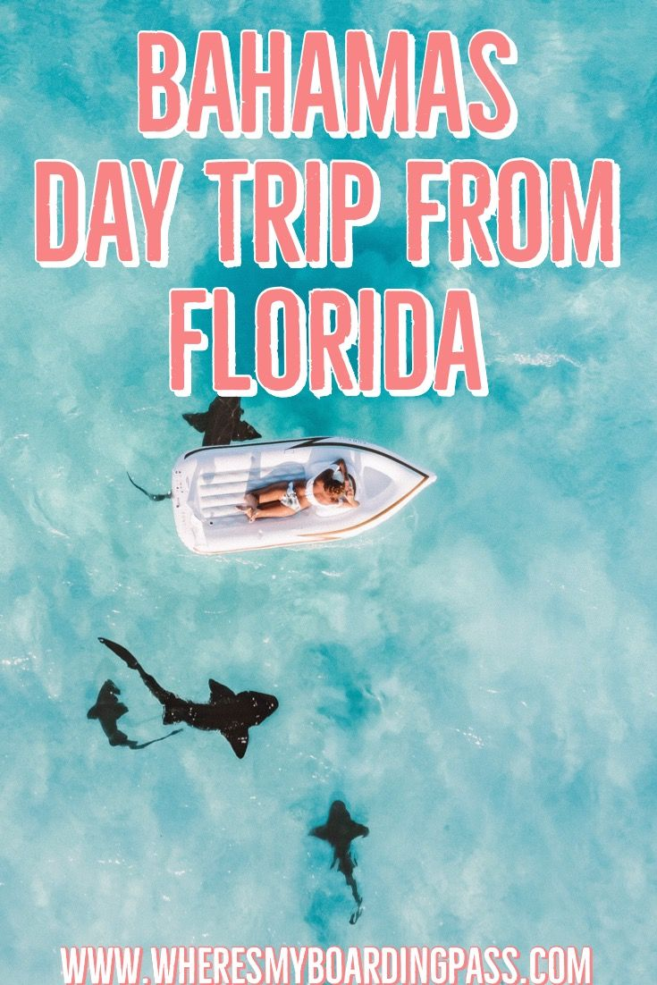 Escape the crowded Miami beaches and head to the Bahamas for a day trip! Find out where you can go, how, and what to do in the #Bahamas     #Miami #FortLauderdale #DayTrip #Florida #MiamiFlorida
