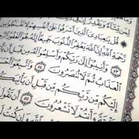 تلاوة باكية سورة الزمر الشيخ ماهر المعيقلى Holy Quran Quran Math