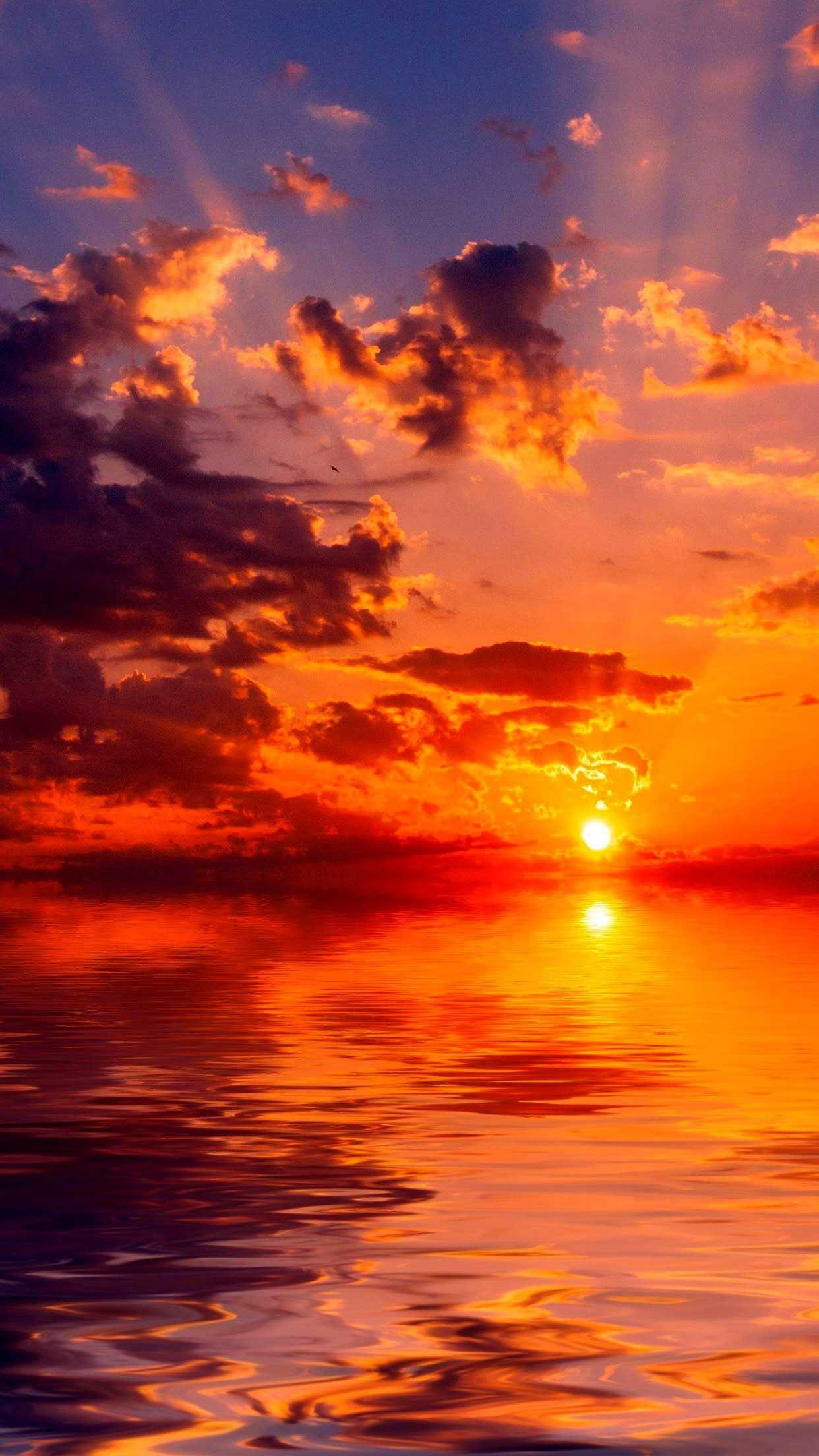 Sea Sunset Horizon Iphone Wallpapers Hd In 2020 Sunset Iphone Wallpaper Sunset Wallpaper Sunrise Wallpaper