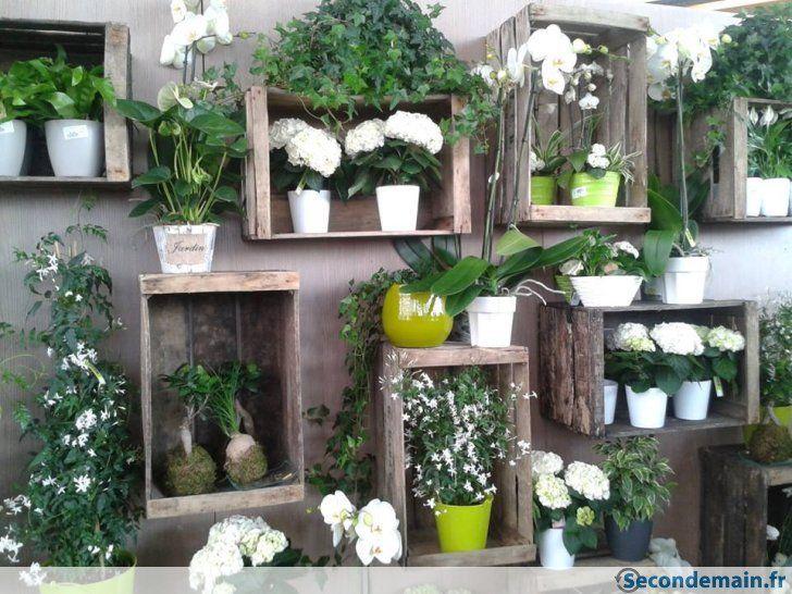 Super Composizioni con piante e cassette di legno! 20 bellissime idee BN26