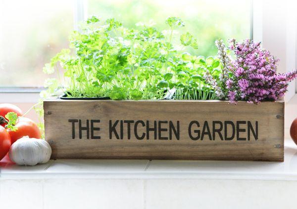 Superb Kitchen Herb Garden Windowsill Planter