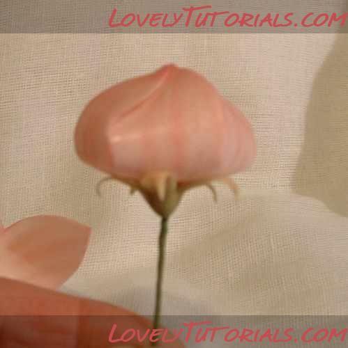 Balloon Flower tutorial
