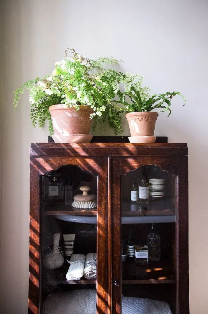You don't want to miss the tour of this beautiful and mindful home in London. This place is proof that you can do wonders with a few well-curated things  #mindfulhome #mindful #slowliving #minimalisthome #minimalhome #plants #indoorhouseplants