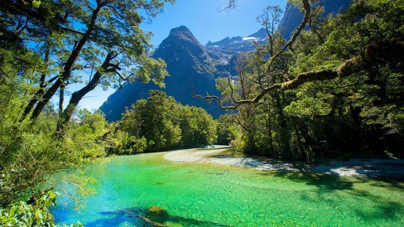 Spectaculaires paysages en nouvelle z lande dans les for Les paysages