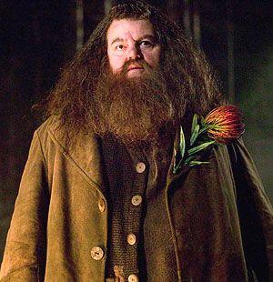 Hagrid Harry Potter Valentines Rubeus Hagrid Harry Potter