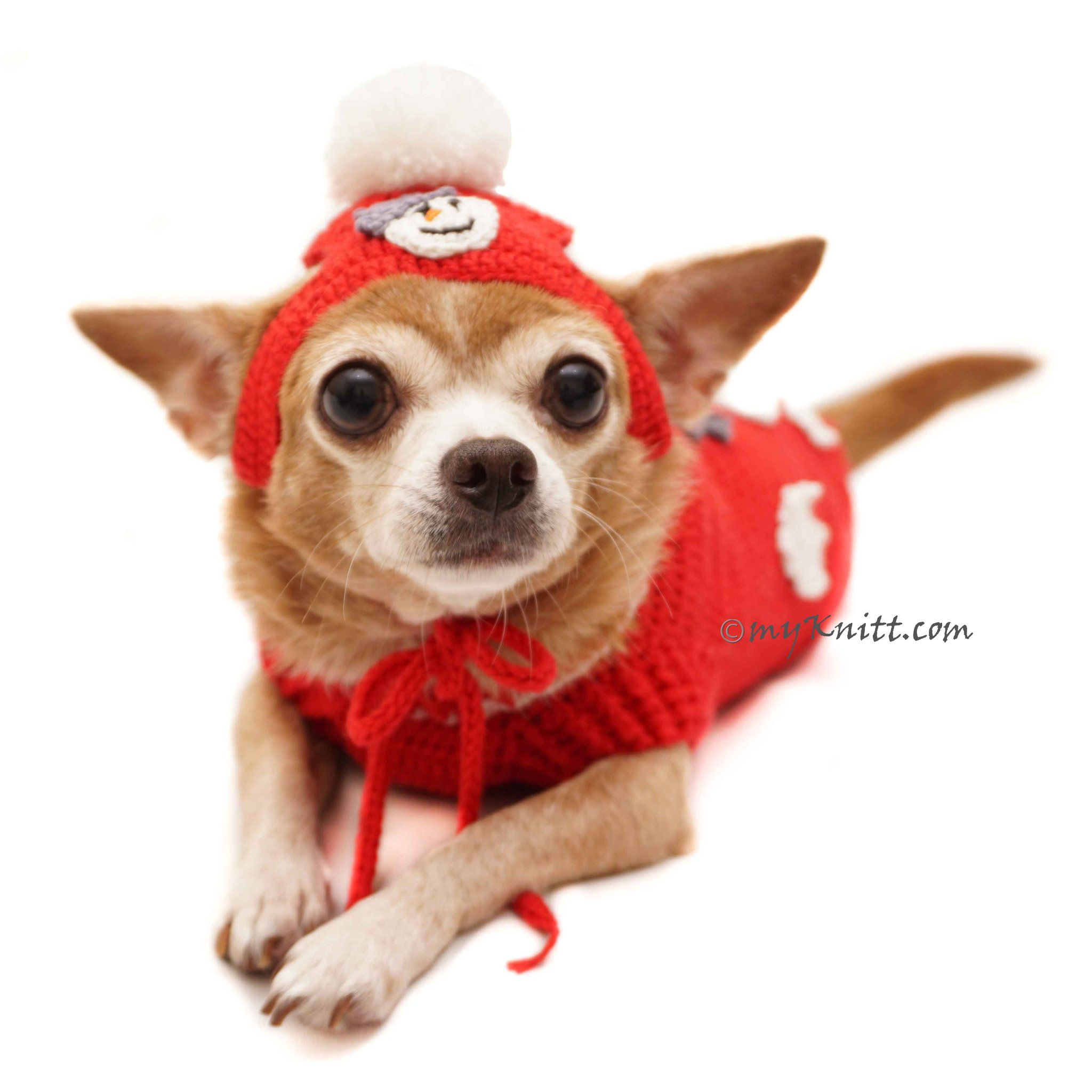 b517ff7a3ed Snowman Dog Costume with Matching Pom Pom Hat Christmas DF90 by Myknitt (4)   chihuahua  cutedog  funnydog