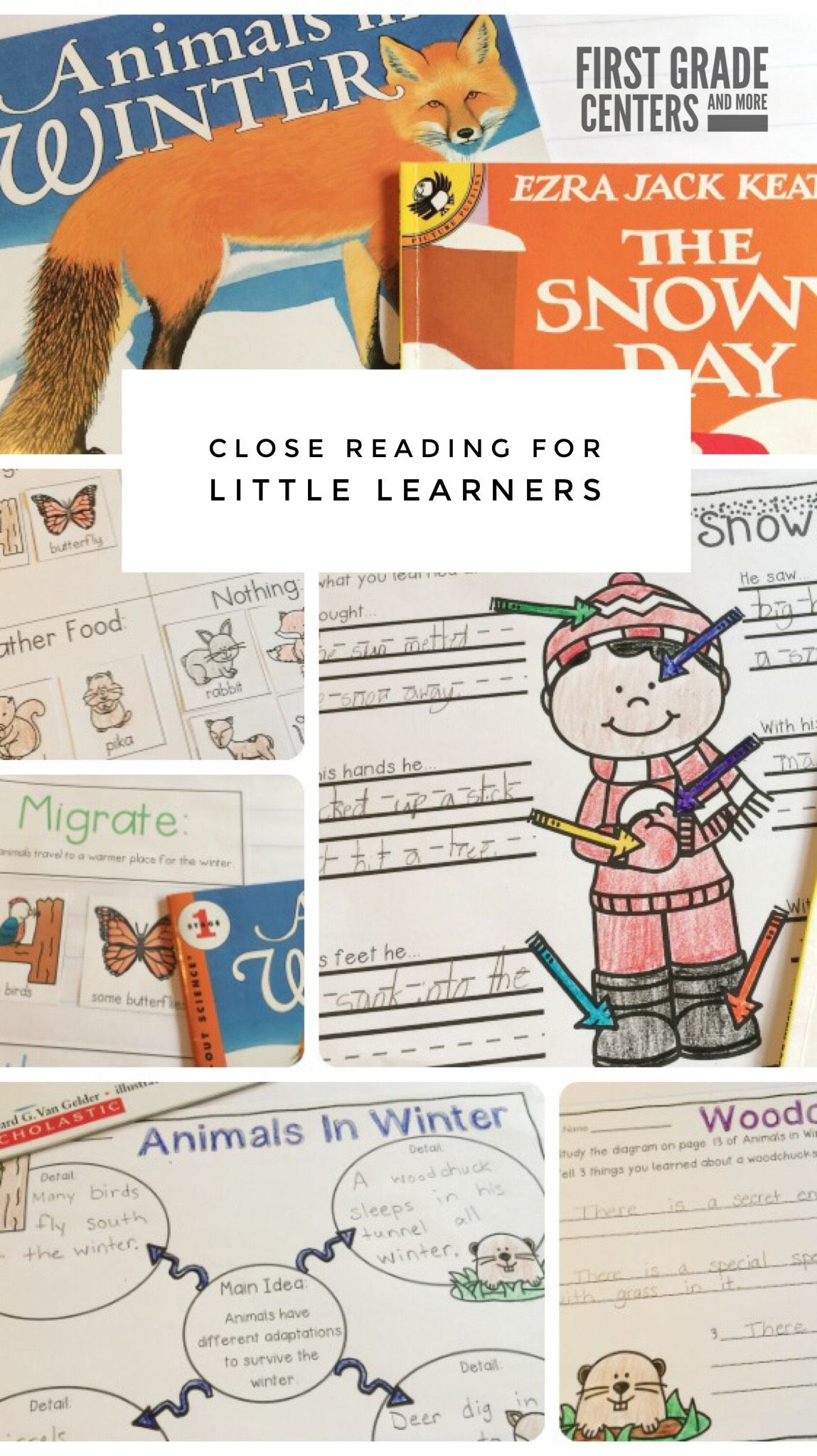 The Snowy Day And Animals In Winter Book Activities
