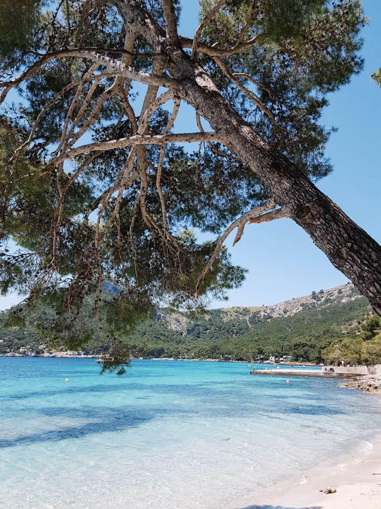 Playa de Formentor – ein Strand wie in der Karibik – Mallorca Momente