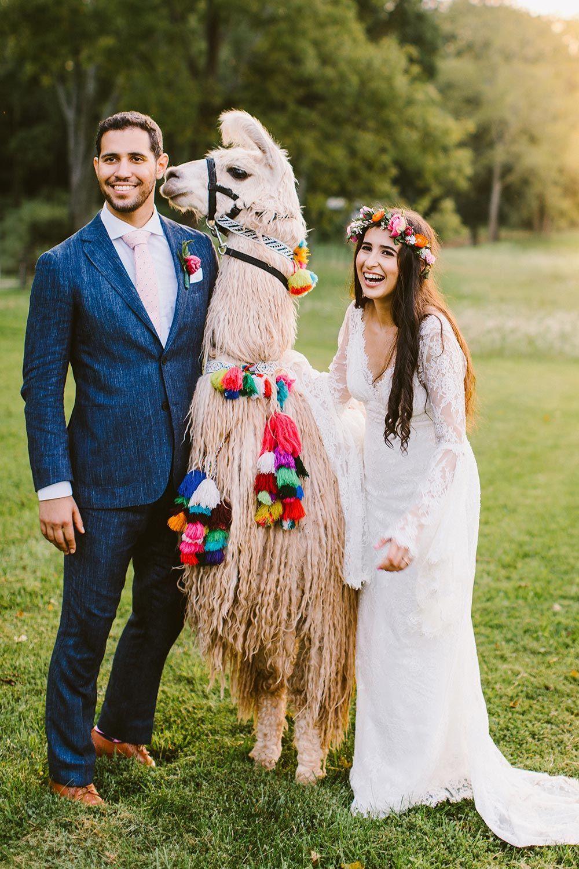 Boho Fun Vibrant Diy Wedding On A Llama Farm Llamasinweddings Colorfuldiywedding Multiculturalweddingideas Diywedding Wedding Pets Bride Wedding