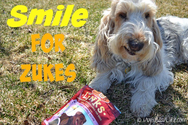 Palate Pleasers From Zuke's {Giveaway} | My GBGV Life @ZukesPets Lil' Links are tasty and healthy treats for your dog!