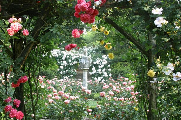 Following Spring Northward Old Westbury Gardens Wilson Kelsey Design Old Westbury Gardens Old English Roses Old Westbury