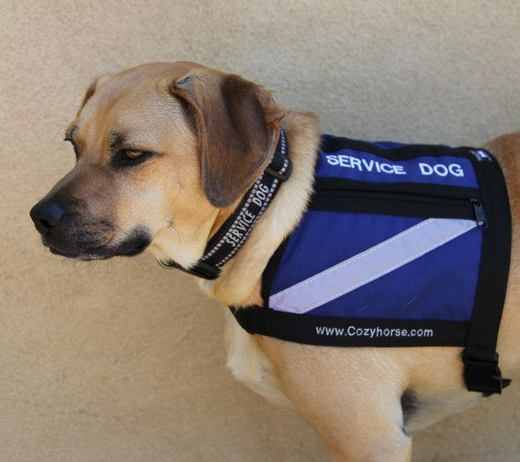 Service Dog Vest New Size For Small To Medium Stocky By Cozyhorse