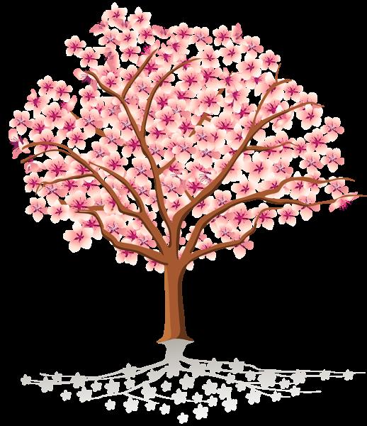 Transparent Spring Tree PNG Clipart Floral wallpaper